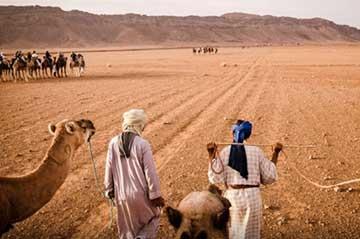 Excursiones de un día desde Marrakech